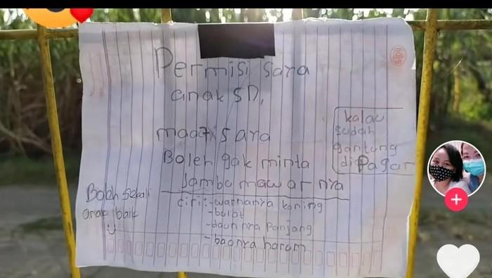 Bocah SD di Sleman tulis surat untuk minta buah jambu milik tetangganya, Rabu (9/6/2021).