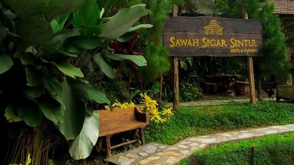 Lokasinya berada di Desa Bojong Koneng, Babakan Mandang, Bogor, Jawa Barat. Restoran ini buka pada Selasa-Jumat pukul 10.00-18.00, sedangkan Sabtu-Minggu pada 08.00-18.00.