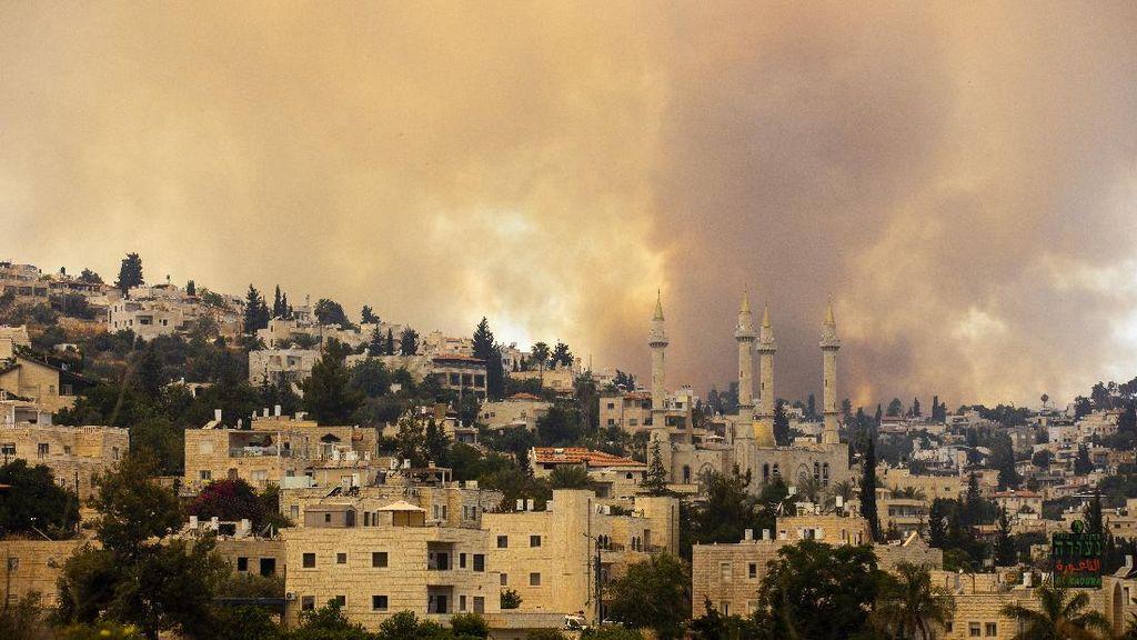Kobaran Si Jago Merah Lalap Hutan di Yerusalem