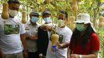 Panen Raya Melon dan Labu Madu di Tengah Pandemi