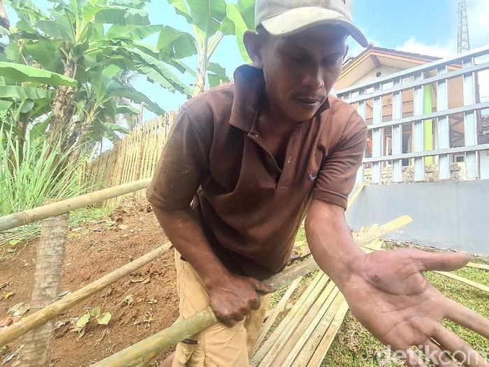 Seorang tukang kebun menjadi korban dipatuk ular di Sukabumi