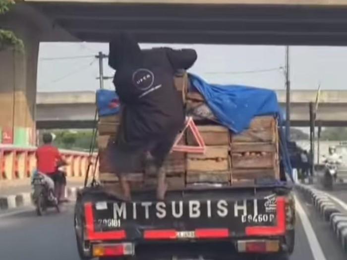 Viral Aksi Bajing Loncat di Jakut Ambil Peti Telur (Foto: Tangkapan layar video viral)