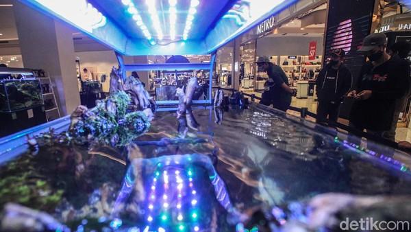 Aquascape dijual dengan harga mulai dari jutaan hingga puluhan juta rupiah.