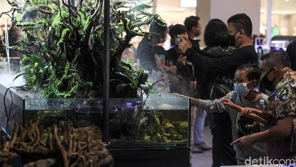 Pengunjung melihat-lihat aquascape yang dipamerkan oleh 10 kontestan.