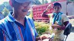 Wanita-wanita Tangguh Pencari Pakan Ternak Sapi di Gunung Merapi