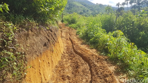 Kawasan Wisata Air Terjun Salu Dambu, berada di Desa Banea, Kecamatan Sumarorong, Kabupaten Mamasa.
