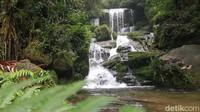 Air Terjun Salu Dambu, Lukisan Alam dari Mamasa