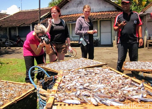 Tak hanya itu, Desa Wonorejo Situbondo yang sering disebut The Eastern Village of Java atau desa paling timur di pulau Jawa ini memiliki potensi desa sangat beragam. Di antaranya potensi wisata desa berbasis lingkungan, perkampungan nelayan, serta sejumlah potensi lainnya.