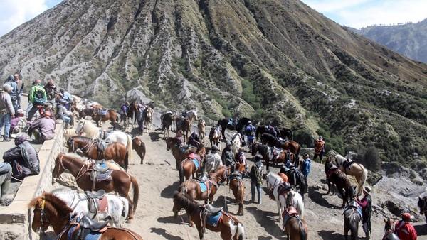 Pemilik kuda menunggu wisatawan untuk menyewa tunggangan di Gunung Bromo, Probolinggo, Jawa Timur, Minggu (13/6/2021).