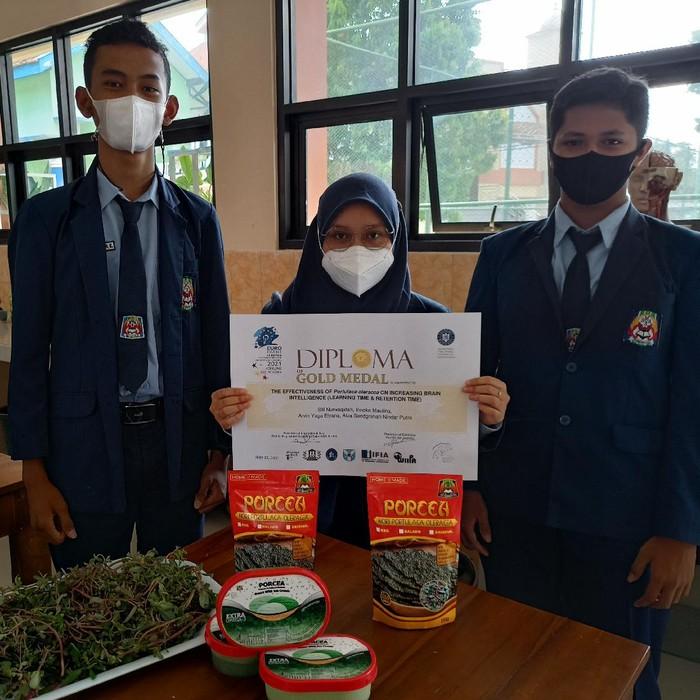 Siswa SMAN 3 Ponorogo Olah Tumbuhan Krokot Jadi Cemilan Sehat