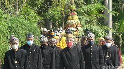 Melihat Sedekah Sawah, Tradisi Tebar Ribuan Belut di Banjarnegara