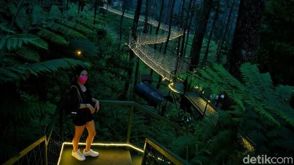 Ke Orchid Forest tentu tidak boleh melewatkan wahana ikoniknya yaitu sky bridge.