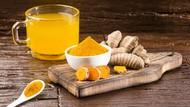 5 Minuman Herba Ini Bisa Membantu Bersihkan Paru-paru