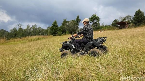 Menyusuri Kawah Wurung lebih dalam dan jauh menggunakan ATV, wisatawan seolah dibawa ke nuansa dataran di benua Afrika. Karena sejauh mata memandang, yang tampak hanya padang ilalang. Warnanya pun bernuansa coklat kekuningan. Eksotis! (Chuk Shatu Widarsha/detikTravel)