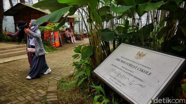 Orchid Forest Cikole merupakan destinasi wisata di kawasan hutan lindung Lembang. Tempat ini memiliki luas sekitar 12 hektare.