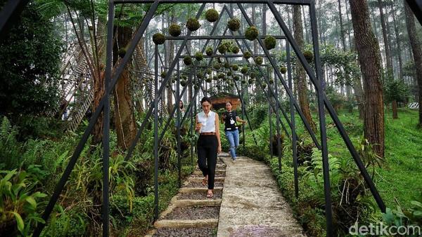 Lembang yang merupakan pusat pariwisata, membuat akses menuju lokasi ini diperhatikan dengan baik oleh pemerintah setempat.