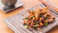 Serangga Bisa Dijadikan Alternatif Protein Hewani? Begini Kata Pakar Unpad