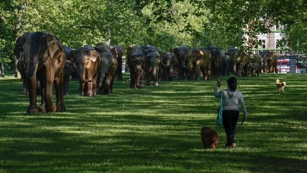 Patung-patung gajah tersebut merupakan bagian dari Kampanye Koeksistensi yang diselenggarakan di London, Inggris.