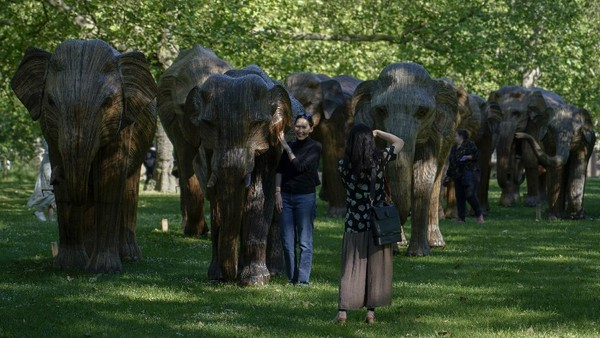 Kehadiran patung-patung gajah itu menarik perhatian warga.