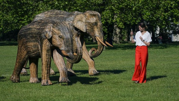 Tak sedikit warga yang mampir di taman tersebut untuk memotret patung-patung gajah yang dipamerkan di Green Park, London.