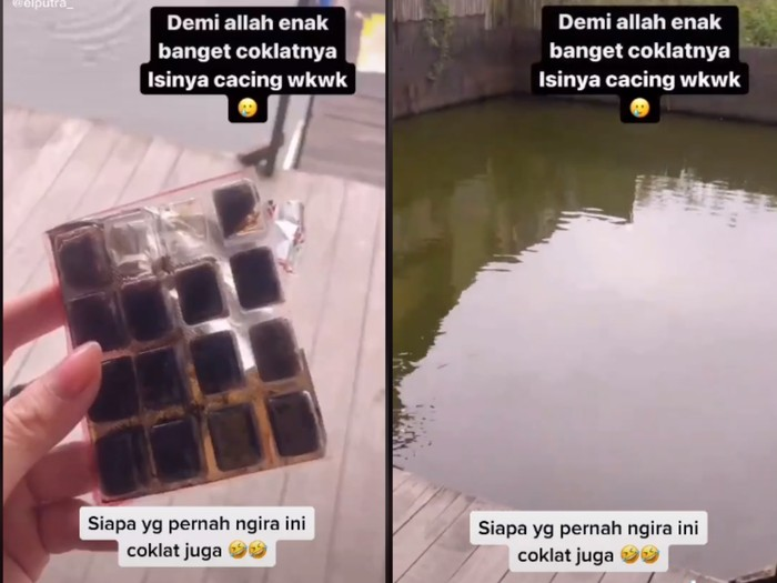 Waduh! Netizen Ini Ngemil Cacing Beku yang Dikira Cokelat
