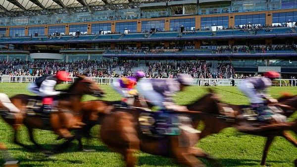 Sesuai namanya, ajang ini menampilkan beragam kuda terbaik yang akan adu kecepatan di lintasan balap. Alan Crowhurst/Getty Images.