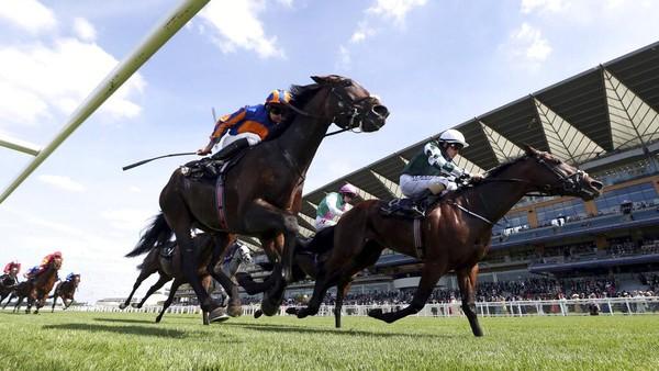 Royal Ascot merupakan ajang balap kuda yang rutin digelar di Inggris. Ajang balap kuda legendaris ini diketahui telah digelar sejak tahun 1711. AP Photo/David Davies.
