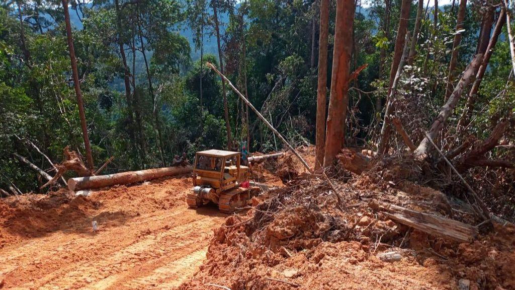 KLHK Tangkap Pembalak Liar di Habitat Harimau Sumatera, Alat Berat Disita