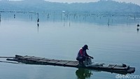 Budidaya Ikan Terancam Gagal Panen, Warga Rawa Jombor Tolak Revitalisasi