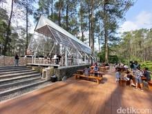 Foto: Warung Kopi Gunung di Tengah Hutan Pinus Lembang