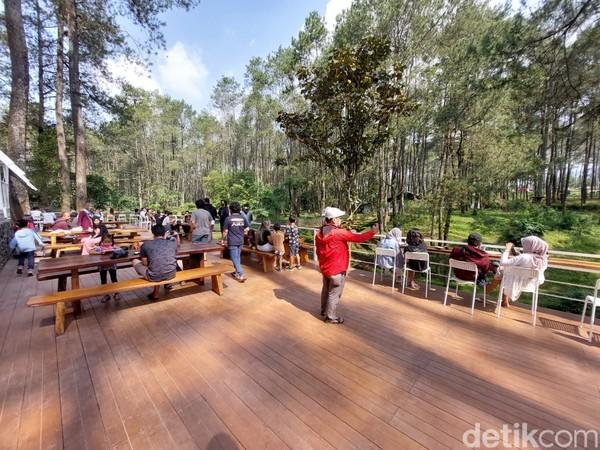 Setiap pengunjung yang sudah memesan dan melakukan pembayaran bisa langsung berjalan-jalan di area hutan pinus.