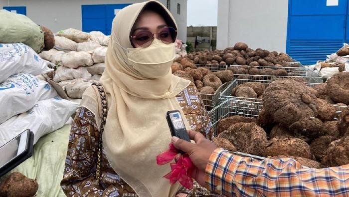 Anggota Komisi IV DPR RI, Ema Umiyyatul Chusnah.