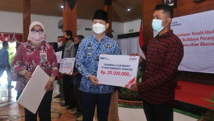 Ratusan Petani Porang Trenggalek Terima Pinjaman Modal Rp ...
