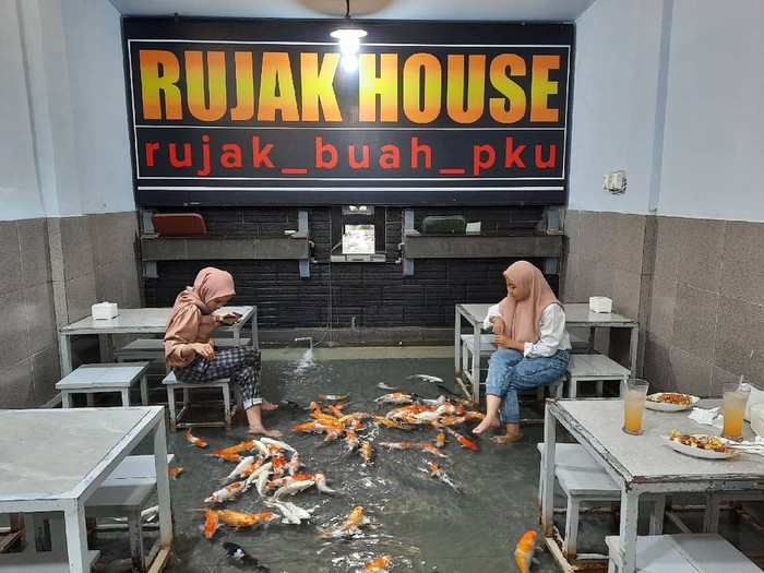 Viral Restoran Kolam Ikan Koi, Sensasi Makan Bersama Ikan Koi