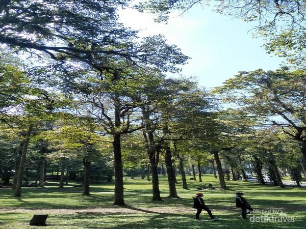 Hutan botani sangat hijau dan memesona