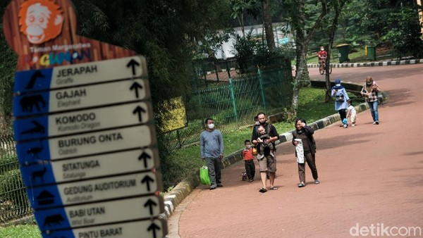 Taman Margasatwa Ragunan kerap jadi destinasi wisata andalan warga Ibu Kota saat libur panjang maupun libur akhir pekan.