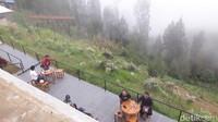 Surga Mungil dari Bromo, Kebun Edelweis Wonokitri