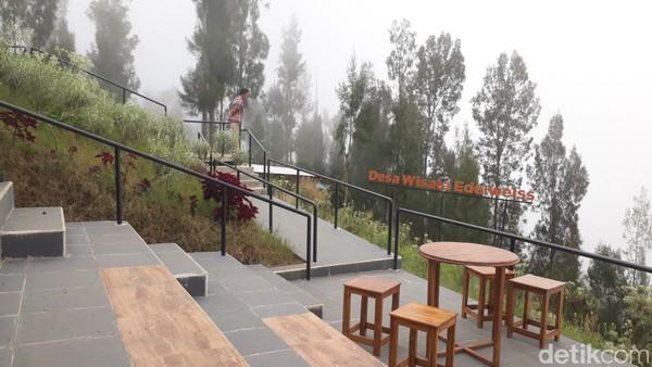 Kebun seluas 1.192 meter ini dikelola Desa Wisata Edelweis Wonokitri, Kecamatan Tosari, Kabupaten Pasuruan.