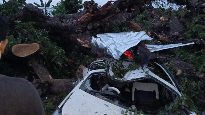 Pohon tumbang di pemakaman timpa mobil peziarah