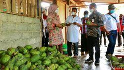Frozen Fruit Banyuwangi Tembus Pasar Jakarta hingga Mataram