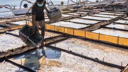 Dukung Pemulihan Ekonomi, BRI Jaring 350 Desa di Program Desa BRILiaN