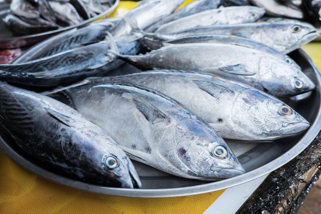 Resep Asam Padeh Ikan Tongkol