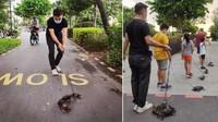 Ajak Kepiting Jalan-jalan di Taman, Pemilik Resto Seafood Minta Maaf