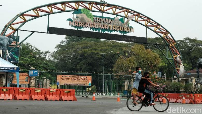 Taman Margasatwa Ragunan di Jakarta Selatan ditutup sementara waktu. Penutupan dikarenakan penguatan PPKM Mikro dan melonjaknya kasus COVID-19.