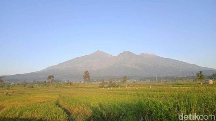 Pendakian Gunung Arjuno-Welirang kembali ditutup. Penutupan dilakukan mencegah munculnya klaster pendakian dalam kasus COVID-19.