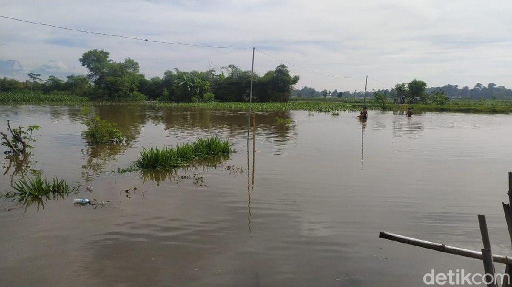 Tanggul Sungai Jebol, Banjir Meluas ke Lima Desa di Blitar