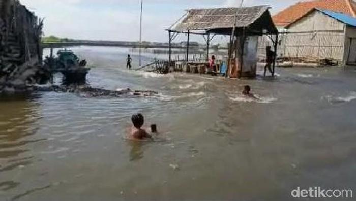 Banjir rob kembali melanda permukiman warga Desa Kalibuntu, Kecamatan Kraksaan, Kabupaten Probolinggo. Itu merupakan banjir tahunan.