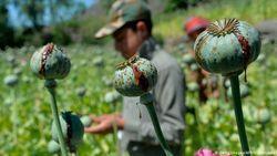PBB: Pandemi COVID-19 Picu Peningkatan Penggunaan Narkoba di Seluruh Dunia