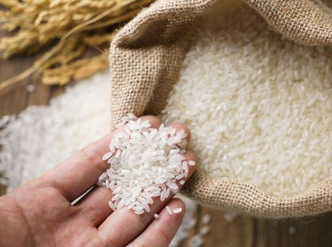 Picking uncooked rice in a small burlap sack