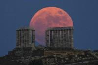 Strawberry Full Moon